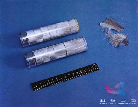 www.xin1946.com 7
