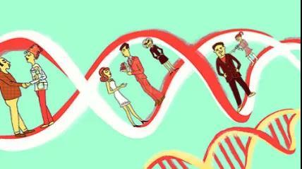 新年脱单术:DNA相亲靠谱吗?