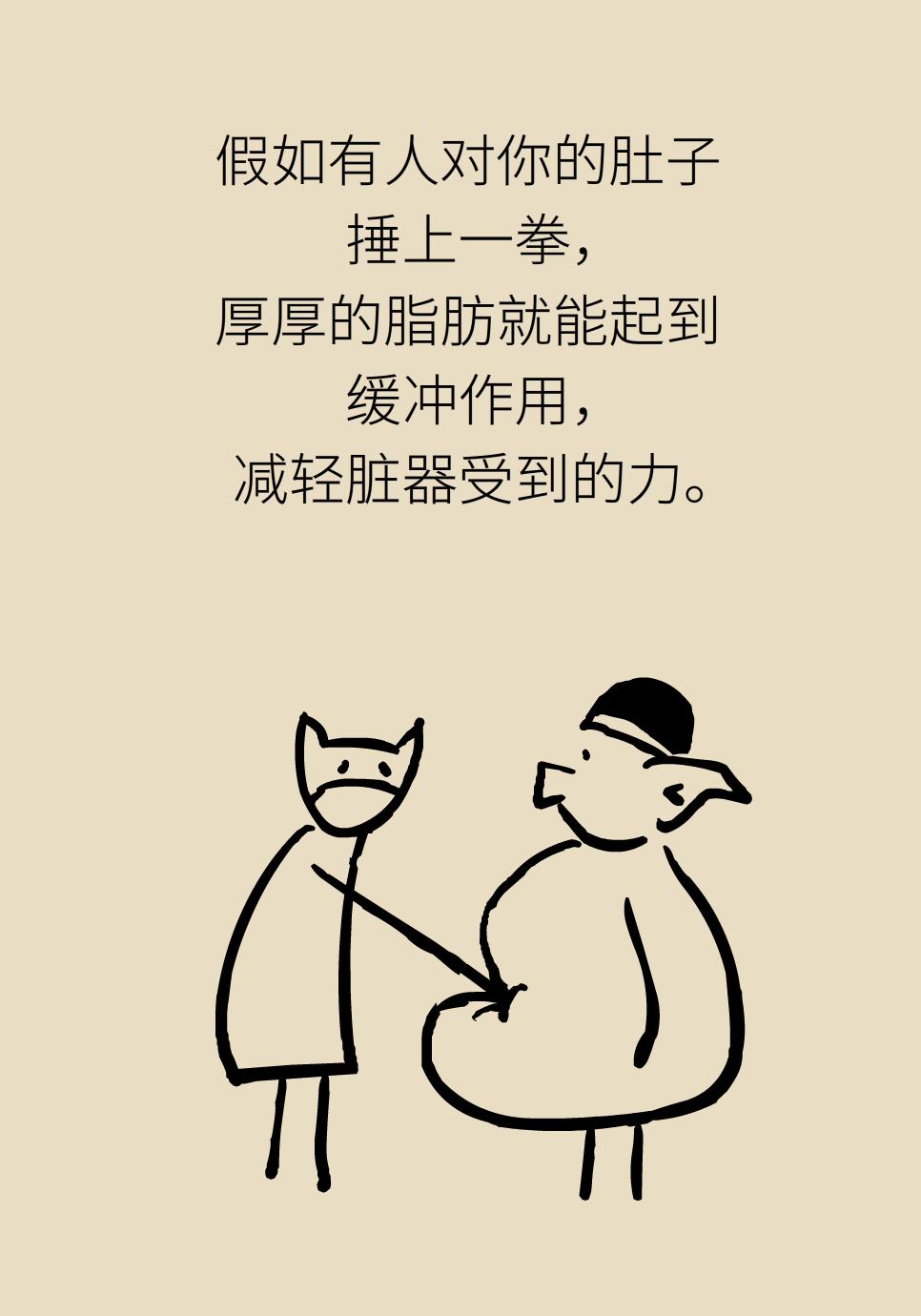 瘦肚子医学科普动漫
